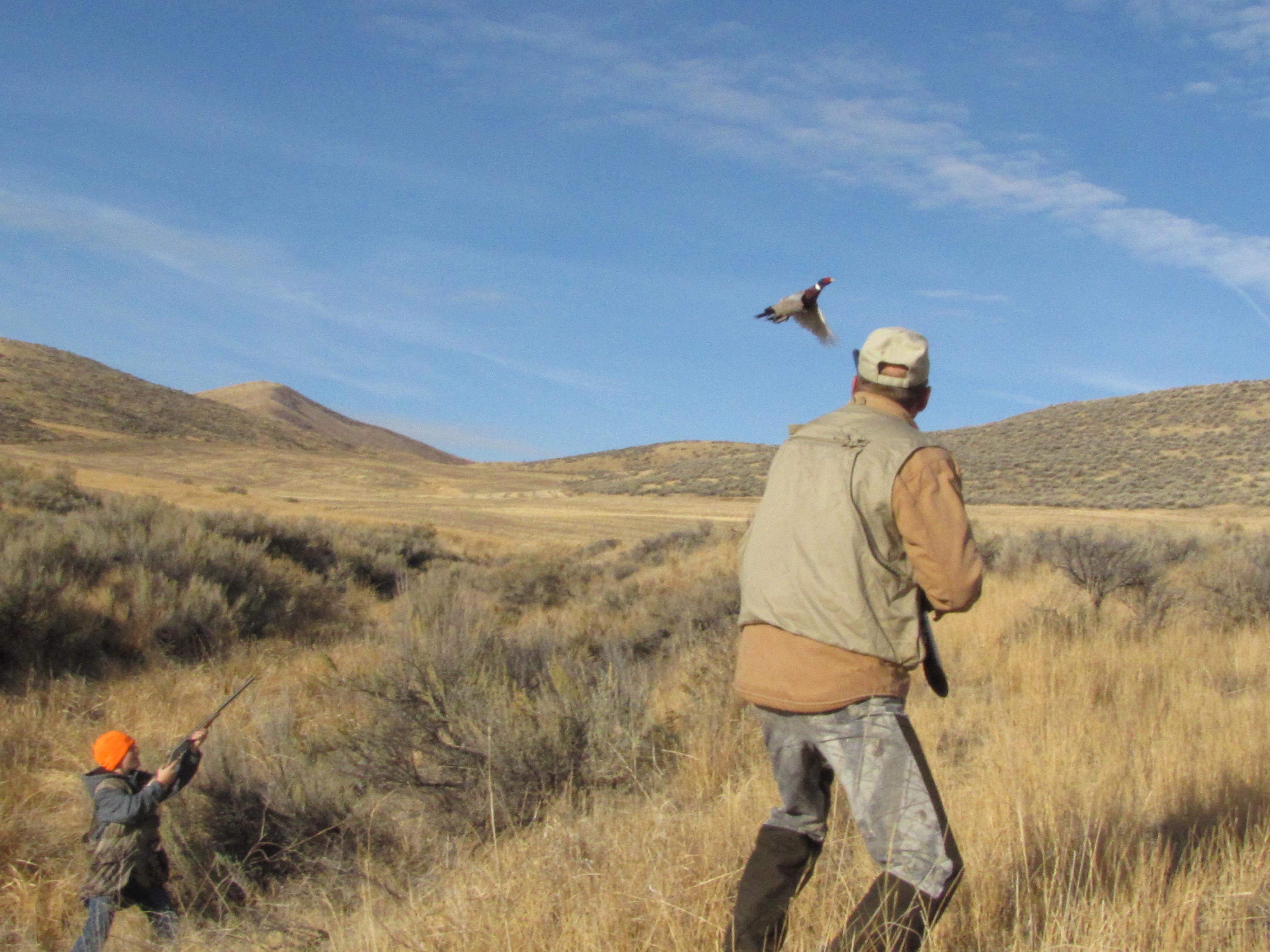 Idaho Hunting Club | Miller Kennels Idaho Hunting Club ...